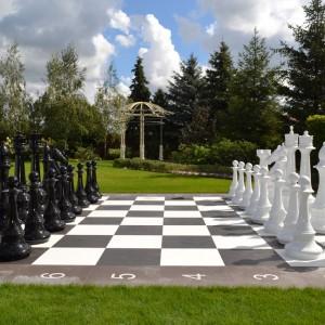 Гигантские шахматы Украина