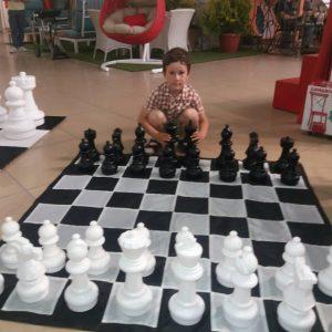 Садовые шахматы СШ-12
