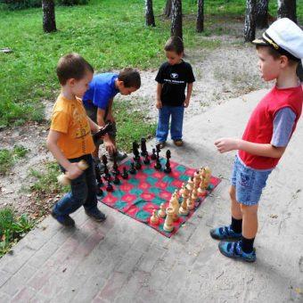 большие шахматы деревянные