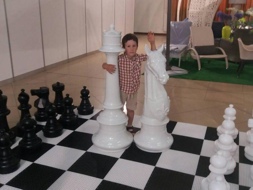 Большие и гигантские шахматы на выставке