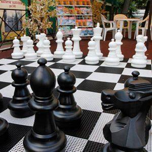 Шахматы из пластика