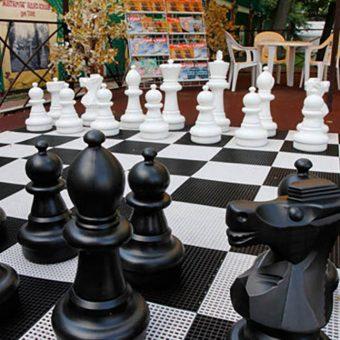 2. Садовые шахматы из пластика